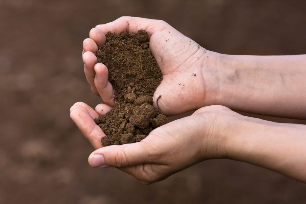 different types of compost and their preparation
